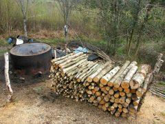 Making charcoal