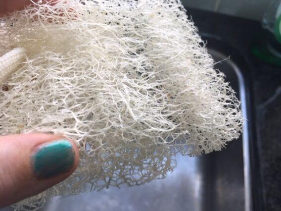 plastic free scouring pad
