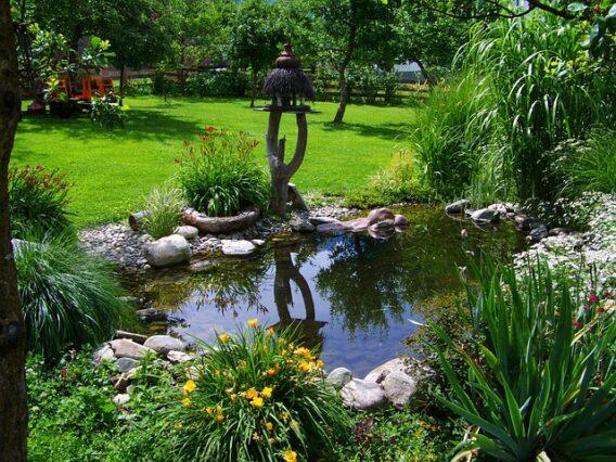 pond safety for children