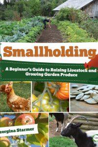 thumbnail_smallholding42 (3) (1)
